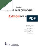 Proiect merciologie.docx