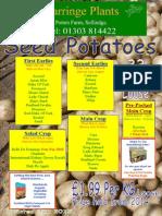 seed potatoes 2015 new