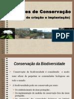 Atividade de Preservação a Natureza 02