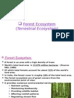 Forest Ecosystem (Terrestrial Ecosystem)