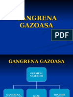 Gangrena gazoasa
