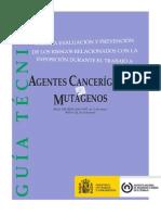Guia Tecnica Agentes_cancerigenos