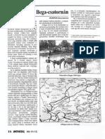 Kunkin Zsuzsanna - Rabmunka a Bega-csatornán
