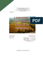 Latifundio y Tercerizacion Agraria en Venezuela