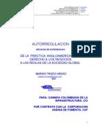 AUTORREGULACION - REVISION DE EXPERIENCIAS