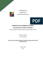 TESIS Tesis Para Recibirse de Abogado Aparentemente u de Chile