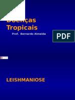 Doenças Tropicais - LEISHMANIOSE