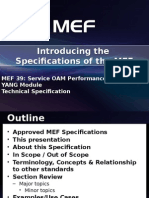 Overview of MEF 39