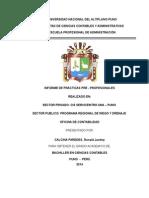 Informe de Practicas Pre Profesionales Contables