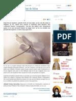 Debandada Lăuntrică - Lun, 19 Ian 2015 17-11-54 _ Doxologia