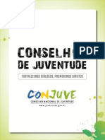 Manual Conselhos Juventude PDF