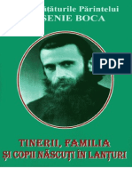 Tinerii, Familia Si Copii Nascuti in Lanturi - Pr. Arsenie Boca (Foarte Comprimat)