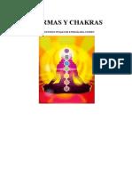 marmas y chakras