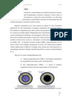 Magnetoliposomes