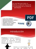 Formulacion documentos