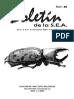 Aporte al conocimiento  del Genero Cycloneda Crotch (Coleoptera