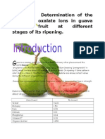 oxalate ion content in guava investigatory project