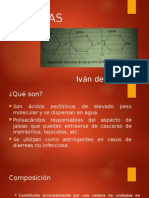 Pectin As