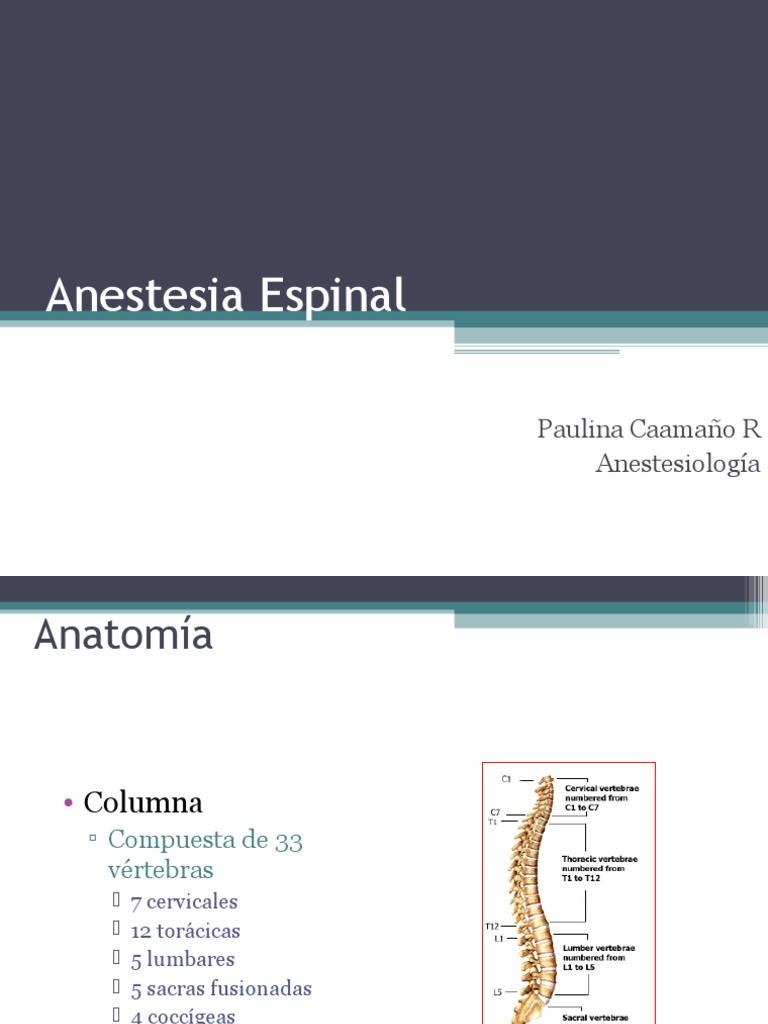Anestesia Espinal Peridural