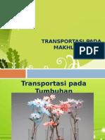 Transportasi Pada Makhluk Hidup