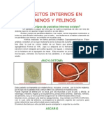 PARASITOSINTERNOSENCANINOSYFELINOS..docx
