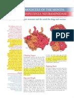 Influenza Neuraminidase