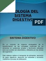 25644151-Sistema-Digestivo.ppt