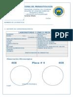 CÁTEDRA DE PARASITOLOGÍA.docx