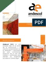 Presentacion Formaleta Metalica Andescol