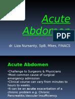 PPT Acute Abdomen, Nyeri akut abdomen