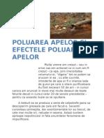 Poluarea Apelor Si Efectele Poluarii Apelor