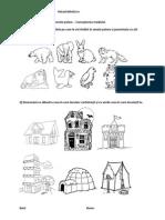 Animale Polare Cunoasterea Mediului