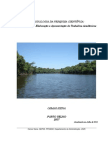 104 Manual de Trabalho Academicorevisado 2011