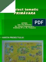 proiecttematic
