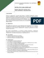 Directiva Triatlon Comunicativa 2014