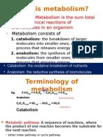 Biochemistry - Metabolism