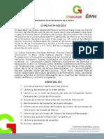 Acta 1ra Sesión Comité de Información 2013