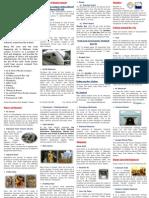 Kualalumpur Guide