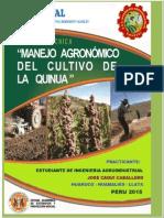 PLAN DE PRECTICA QUINUA..docx
