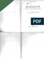 F. Neumann, Behemoth, Introducción