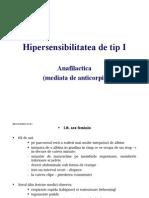 HipersensibilitateaI_2014