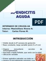 apendicitisaguda0809-090916192524-phpapp02