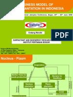 Current Bussines Model of Jatropha Plantation in Indonesia