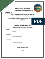 DETERMINACIÓN DE FÓSFORO.docx