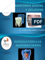 Introduccion a La Anatomia Dental