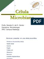 Aula 1_Celula microbiana.pdf