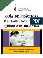 GUIA DE PRACTICAS LAB INORGANICA ACTUALIZADO 2.pdf