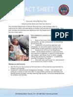 ChildWelfarePlan.pdf