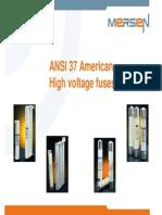 TM 108 High Voltage American Fuses ANSI 37 En