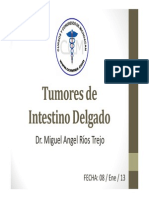 Tumor Intestino Delgado